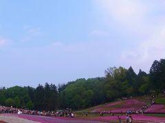 2012.5 秩父羊山公園の芝桜の丘へ