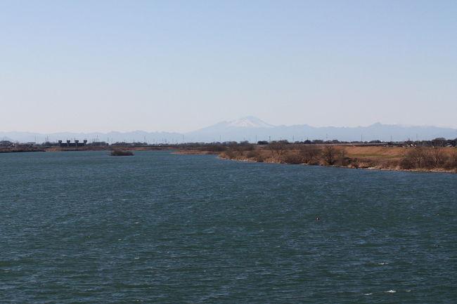 久しぶりに、ツクシガモが行田市の利根川に出ているとの情報を戴き、見に行ってきました。<br />真冬とはいえ、利根川を吹く風は冷たかったです。<br />ツクシガモの距離が遠すぎるうえに、寝ていたりお尻を向けていて、いまいちの写真でした。<br /><br />表紙写真は、行田市の武蔵大橋付近から見た利根川の風景です。<br /><br />※ 2017.02.19 位置情報登録