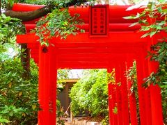 神社仏閣をぶらりとお散歩。三大住吉神社のひとつです。