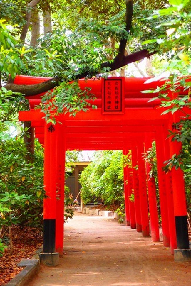 博多区住吉にある住吉神社をぶらりと訪問。<br /><br /><br />住吉神社<br />福岡市博多区住吉3丁目1-51<br />092-291-2670<br />