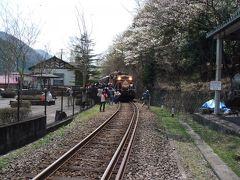 わたらせ渓谷鐵道-トロッコ列車-