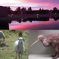 羊の多い国 ニュージーランド  主に南島紀行 11日間  2010年3/4月