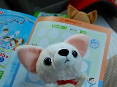 【ちわこと旅する】新東名のサービスエリアに寄ってみるワン!
