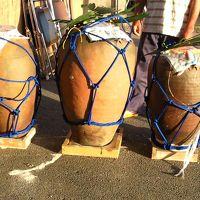多良間島の豊年祭「スツウプナカ」を訪れる旅