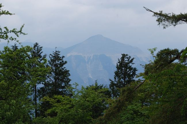 6月2日、午前7時56分上福岡発の東武東上線に乗り、秩父の丸山登山ハイキングをするために出発した。<br />今回の目的は恒例のヨーロッパアルプストレッキングのためにトレーニングするためである。 このために標高差が約660mある丸山を選択した。 それから、歩行距離として11キロ以上歩くようにした。<br />結果的には初めて歩く、芦ヶ久保~大野峠~丸山~芦ヶ久保果樹園村~芦ヶ久保のハイキングコースは無事に踏破することができた。 梅雨前の薄曇りで気温はやや低めで快適なハイキングができた。 行程、歩行距離、所要時間、標高差は以下のとおりである。<br /><br />(行程)上福岡ー川越ー東飯能―芦ヶ久保ー大野峠ー丸山ー県民の森ー高篠鉱泉郷分岐ー芦ヶ久保果樹公園村ー芦ヶ久保<br />ー東飯能ー川越ー上福岡<br />(歩行距離) 11.35キロ<br />(歩行時間)  4時間40分(食事休憩時間を除くと4時間10分)<br /><br />(標高差)960m-317m=643m<br /><br /><br />*写真は丸山山頂より見られた武甲山<br />
