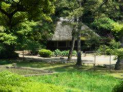 連続投与が効果的、2日連続東京散歩「小石川後楽園~神楽坂」