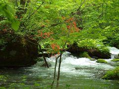 奥入瀬渓流を歩く (2) 雲井の滝から  青森  6