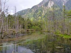 初夏の上高地♪ Vol3(第1日目午後) ☆上高地帝国ホテルから美しい岳沢湿原へ歩く♪