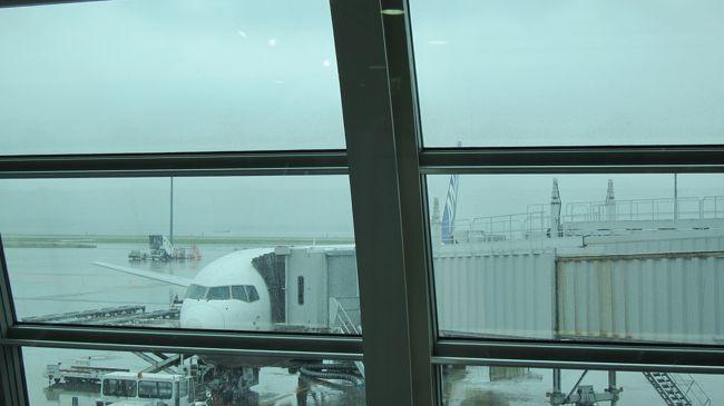 旧友とFacebookで繋がって、同窓会を企画することになりました。<br />大半が大阪在住なので、東京から1泊2日で飲みに行ってきました。<br /><br />出発日は東京も大阪も雨。<br />だけど、東京は少し寒かったのですが、大阪は蒸し暑い雨模様でした。