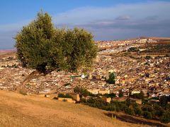 サハラ砂漠を目指してモロッコ一人旅4*・゜・*世界一の迷宮都市/フェズ*・゜・*