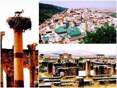 サハラ砂漠を目指してモロッコ一人旅4*・゜・*聖者の町ムーレイ・イドリスと世界遺産ヴォルビリス遺跡*・゜・*
