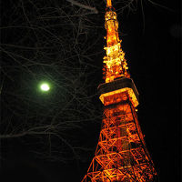 日本への旅 二度目 東京 大阪