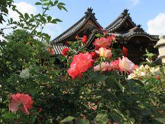 おふさ観音のバラ庭園