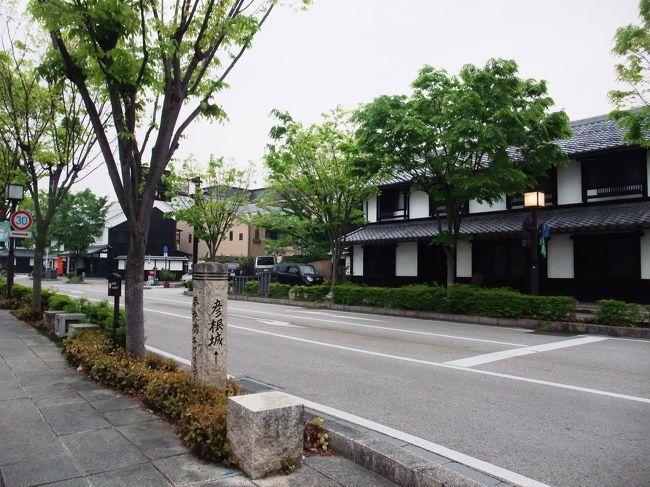 彦根は、井伊家35万石の城下町。落ち着いたとてもいい街です。 私は今までに何度か彦根を訪れていますが、今回も関ヶ原散策*(旅行記名:史跡めぐり 「関ヶ原」ミニ散歩:http://4travel.jp/traveler/nnkojima/album/10678619/)や、泉神社の名水*(旅行記名:名水を訪ねて 「泉神社の御神水」http://4travel.jp/traveler/nnkojima/album/10679802/)を訪ねた帰りにまたやって来ました。 芹川の畔に宿を取り、夕方と朝に、彦根の街中を散歩しました。観光客が多く訪れる彦根城からは、少し外れた所にも素敵なところがいっぱいあります。 今回私が歩いたのは、芹川に架かる芹橋界隈から、彦根城のお堀に架かる京橋界隈までの区間です。 彦根八景のケヤキ並木や善利組足軽組屋敷、明性寺などは今回初めて訪れた場所ですが、とても素敵で、お薦めしたいところです。