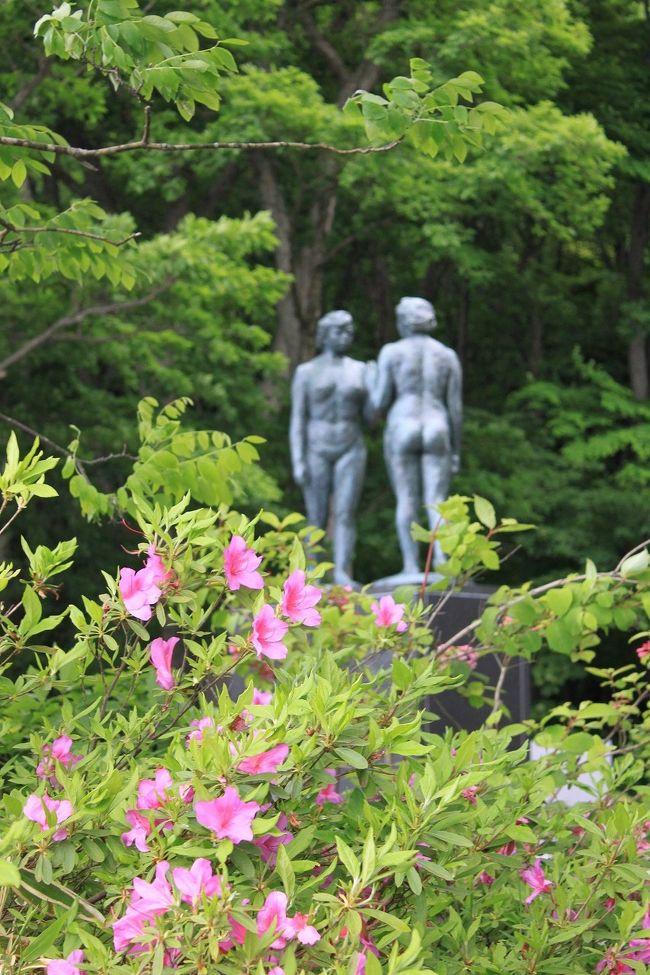 約35年前 学生時代に東北を旅行し、それ以降行っていなかった所に行こうと思っていた時、昨年の震災があり、遠慮していましたがそろそろ落ち着いてきたかなと思い、復興支援を兼ねて東北に行ってきました。<br />今回のツアーは、初日に世界遺産に登録された中尊寺、十和田湖の奥入瀬渓流、日本三景の松島を関西から1泊2日で行くもので、宮城、岩手、秋田、青森の4県をバスでかけ回る弾丸ツアーです。ただツアー費用は何と一人2万5千円と格安です。(昼食は自由喫食)<br />1日目は6月22日に記載していますので、2日目の奥入瀬渓流から日本三景の松島観光を記載します。
