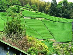 日本の旅 関西を歩く 京都府木津川市加茂町(かもちょう)の里山周辺