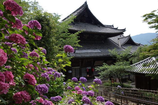 2012年の紫陽花の旅です。<br /><br />今年は、6月30日から7月1日の1泊2日の旅です。<br />6月30日に奈良に向かい、長谷寺、談山神社、久米寺を訪問。あじさいが元気に咲いていました。<br />7月1日は京都の黄檗山万福寺のあんまり咲いてないハス、三室戸寺のあんまり咲いていないハスとピークを過ぎた紫陽花、柳谷観音(楊谷寺)の元気な紫陽花を堪能しました。<br /><br />とりあえず1日目です。<br />6月30日は、5時49分坂出発のマリンライナーです。岡山でのぞみ108号に乗換して新大阪。大阪まで出て環状線で鶴橋へ近鉄に乗換えて特急で大和八木駅。普通に乗換え、長谷駅です。ここで8時55分。<br /><br />長谷駅の前でたまたまタクシーがいたので、タクシーで長谷寺に行きました。ワンメーターの距離ですというか、多分、上がる直前に精算ボタン押してくれました。いい人です。<br /><br />長谷寺から旅は始まります。<br /><br />写真は長谷寺<br /><br />