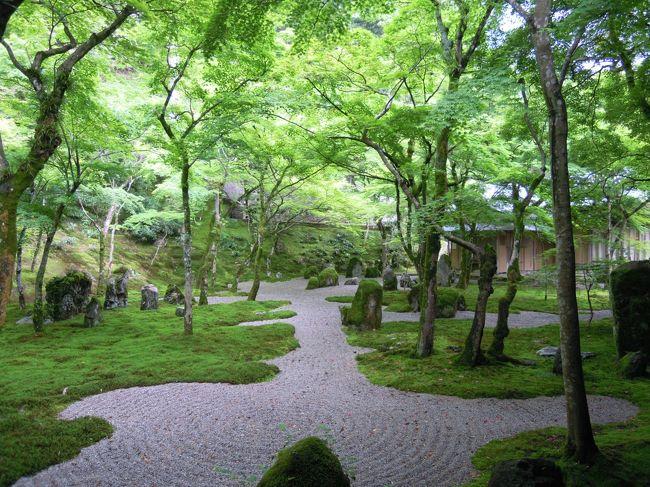 学生時代の友達3人で福岡・長崎へ遊びに行きました。<br /><br />2010年に平城遷都1300年祭を記念して奈良に行き、平城宮跡で天平衣装を着た孝謙さん、M子さん、コクリコのメンバー。<br /><br />M子さんと私は福岡は初めて、孝謙天皇こと孝謙さんは小学校〜高校の途中まで福岡で過ごし、現在でも福岡に領地を持っているので福岡に年に数回は行くという福岡通(通と言っても偏っていたけど)。<br /><br />「平城宮跡を見たのだから大宰府を見なくてはいけません」<br />という孝謙さんの鶴の一声で大宰府に行くことになりました。<br /><br />「遠い九州に行くんだから行ったことのない長崎にも行きたい♪」<br />とコクリコが意見に<br />「そうね〜龍馬さまの亀山社中に行きたいわね〜」<br />と坂本龍馬ファンの孝謙さんが大賛成し、長崎行きも決定。<br />長崎は3人とも初めてです。<br /><br />