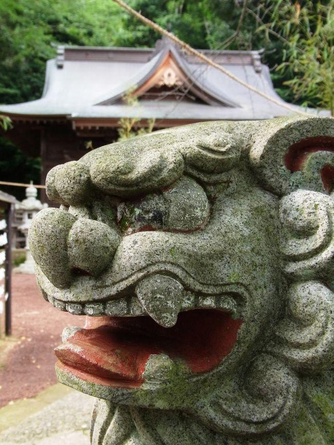 鮎を食べに行ったついでに、修善寺をサクッと観光。<br /><br />存在すら知らなかった日枝神社ですが、なぜか導かれるように境内へ。<br /><br />あまり期待していなかっただけに、神聖なる空間にびっくり。<br /><br />巨木が真っ直ぐにそそり立つさまは、パワースポット的な要素が満載でありました。