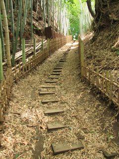 佐倉市散策(32)・・佐倉城下に坂道を訪ねます。