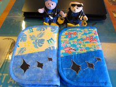 くまくまの石垣島日記 2012夏休みはうみまると一緒にヤシャハゼを撮ってヤシャベラを釣ったぞ