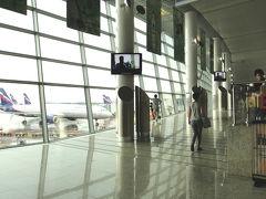 5年ぶり、モスクワ・シェレメチェボ空港の進化~2011年夏コーカサス3か国+モスクワ旅行・17~