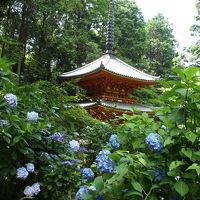 石仏の里 当尾(とうのお)の里を訪ねて 浄瑠璃寺から岩船寺へ