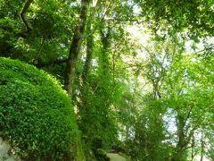 優雅なポルトガル旅・憧れのマデイラ島でバカンス♪ Vol20(第2日目午後) ☆シントラ:ムーア城から森の中の素敵な遊歩道を歩いてシントラへ♪