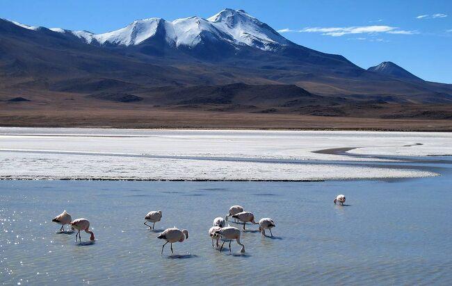 2012年の5月末から50日間で二度目の世界一周をしました。第一作目はボリビア編で、ペルーのプーノからラパスに入り、その後二泊三日のウユニ塩湖ツアーでチリのサン・ペドロ・デ・アタカマまでボリビアを縦断しました。第三部は、二泊三日のウユニ塩湖ツアーの二日目の記録です。なお、この旅行記は、ホームページ:団塊夫婦の世界一周絶景の旅 http://www.geocities.jp/greenbambooin の2012年世界一周旅行編にリンクされています。(表紙写真は、砂漠の中の神秘の湖・ラグーナ・ヘディオンダとフラミンゴ)