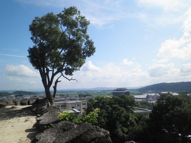 ここでは観光。上野といえばまずは忍者。あと、お城もあるらしい。。。というわけで、上野公園をぐるっと一周してみました。<br />【城】【博物館】<br /><br />◇伊賀鉄道記録◇(一部編集中)<br /> (1)860系さよなら撮影会<br />http://4travel.jp/traveler/planaly/album/10687483/<br /> (2)860系さよなら運転出発式<br />http://4travel.jp/traveler/planaly/album/10692627/<br /> (3)860系さよなら運転<br />http://4travel.jp/traveler/planaly/album/10692691/<br /> (4)伊賀上野観光(伊賀上野城、忍者博物館)<br />http://4travel.jp/traveler/planaly/album/10692718/<br /> (5)伊賀市庁舎、伊賀鉄道(上野市-伊賀上野)、JR関西本線等帰路<br />http://4travel.jp/traveler/planaly/album/10713462/<br /><br /> ◆全旅行記目次◆<br />http://4travel.jp/traveler/planaly/album/10642746/