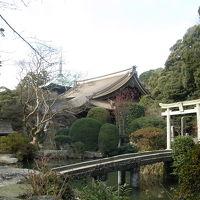 筑紫湖&薬王院でバードウォッチング [2002](1)
