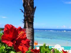 2012年 7月 沖縄本島のなつやすみ ②
