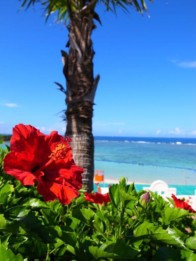 <br />2012年7月14日(土)~7月16日(祝・月)<br /><br />ここのところ毎年恒例になっている、海の日in沖縄★☆<br /><br />本当は宮古島や石垣島などのんびりと離島に行きたかったのですが、現在妊娠8カ月に突入・・・<br /><br />今回は海にも入れないということで、今年はゆっくりまだ行ったことのない沖縄本島へ。<br /><br /><br />途中スコールに見舞われたりもしましたが、美ら海水族館に行ったりと、炎天下の中のんびりと楽しむことができました!!<br /><br />写真はホテル日航アリビラのプールより<br /><br />カメラはGR-DIGITALⅢです。
