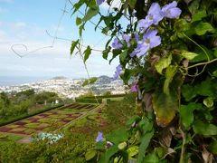優雅なポルトガル旅・憧れのマデイラ島でバカンス♪ Vol103(第9日目午前) ☆マデイラ島フンシャル:「Jardim Botanico」(植物園) つる性植物のカラフルな花たちに驚く♪
