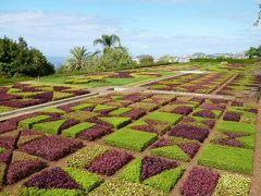 優雅なポルトガル旅・憧れのマデイラ島でバカンス♪ Vol104(第9日目午前) ☆マデイラ島フンシャル:「Jardim Botanico」(植物園) バラ・ラン・サボテンなど美しい花を鑑賞♪