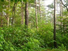 2012年 浅間高原の優雅な避暑ライフ♪ Vol1 ☆浅間高原の美しい7月の自然♪