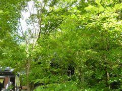2012年 浅間高原の優雅な避暑ライフ♪ Vol3 ☆中軽井沢 ハルニレのマルシェを楽しむ♪