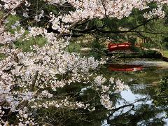 桜咲く瀬戸内へ(その1、玉藻公園と栗林公園)