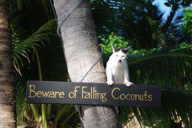 夏休みビーチ旅⑫ 2012 サムイ島その3 この世の極楽 チャウエンビーチ篇