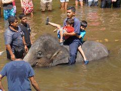 アジアゾウと川遊び♪