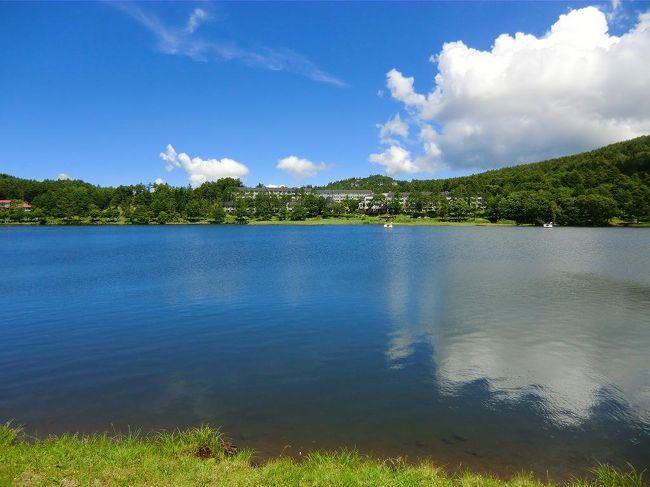 連日、好天に恵まれ、この日は八島湿原のハイキングをする。湿原には高山植物が咲き、トンボや蝶が群れる。夏の八島湿原は植物観察の宝庫で勉強になる。<br /><br />写真:女神湖とホテルアンビエント蓼科全景<br /><br />私のホームページ『第二の人生を豊かに―ライター舟橋栄二のホームページ―』に旅行記多数あり。<br />(新刊『夢の豪華客船クルーズの旅』案内あり)<br />http://www.e-funahashi.jp/<br /><br />