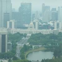 桜子の「丸ビルランチとロイヤルパークホテル汐留タワーにステイ」