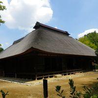 石神井公園を散策