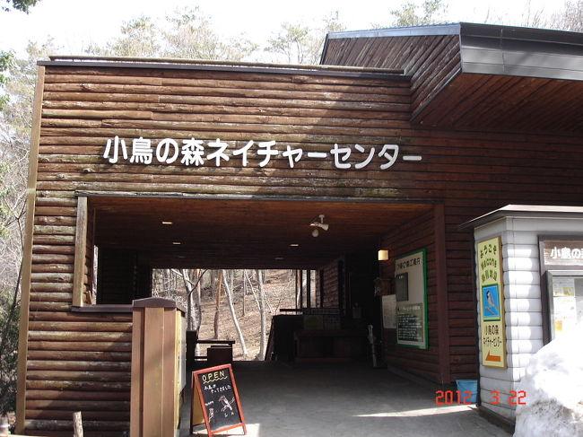 福島市小鳥の森でバードウォッチングを楽しんできました。<br />