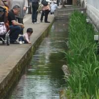 2012春/津和野旅行&有福温泉/長距離ドライブデビュー1才7ヵ月
