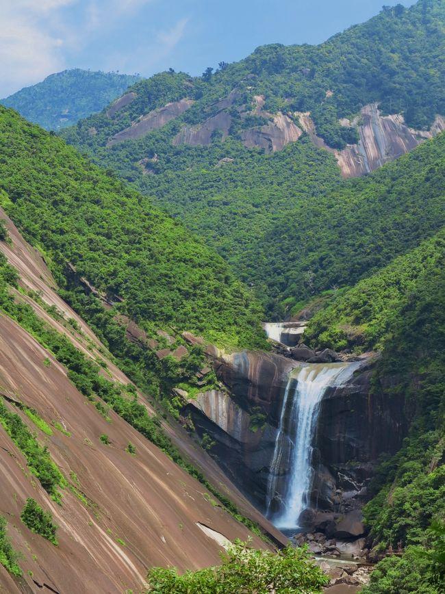 千尋の滝(せんぴろのたき)は、屋久島にある滝。多数の滝がある屋久島でも良く知られた滝である。<br /><br />屋久島中央部に水源を持つ鯛ノ川にある落差60メートルの滝である。屋久島南東部のモッチョム岳(標高940メートル)東側の斜面に広がる250メートル×300メートルの巨大な花崗岩の岩盤に面しており、その岩盤の大きさが千尋、すなわち千人の人間が手を結んだくらい大きいという例えから名付けられた。<br />滝の南側の高台が展望台になっており、車で容易に訪れることが出来ることから、屋久島を代表する観光スポットとして知られている。<br />(フリー百科事典『ウィキペディア(Wikipedia)』より引用)<br /><br />千尋の滝は、落差約60メートルの滝です。滝の左側には250メートル×350メートルに達する、巨大な花崗岩の一枚岩があります。展望所は標高270メートルにあり、滝の反対側では原集落と太平洋が一望できます。 駐車場も広く、トイレには身障者用の設備もあります。<br />ここから登るモッチョム岳は標高944メートルで、照葉樹林帯から杉樹林帯まで素晴しい自然が残されています。登山道沿いでは万代杉などの大きな屋久杉も見られます。「げじべえ」は屋久島の大木、老木に棲みついていると言われる森の精です。 <br />森と共に生きてきた先人たちの知恵と、これからの私たちの生き方を考えていきたいとの思いで、この地を「げじべえの里」と命名したそうです。 <br />(http://www.realwave-corp.com/06walk/05/index.htm より引用)<br /><br />屋久島は、鹿児島県の大隅半島南南西約60kmの海上に位置する島。熊毛郡屋久島町に属し、近隣の種子島や口永良部島などと共に大隅諸島を形成する。<br /><br />面積504.88km²。円形に近い五角形をしている。鹿児島県の島としては奄美大島に次いで2番目、日本全国では9番目の面積である(北海道・本州・四国・九州を除く)。全島が屋久島町一町に属している。<br />(フリー百科事典『ウィキペディア(Wikipedia)』より引用)<br /><br />屋久島については・・<br />http://www1.ocn.ne.jp/~yakukan/<br />http://www.tabian.com/tiikibetu/kyusyu/kagosima/yakusima/<br />http://www.office-manatsu.com/<br />http://yakushima.yamakei.co.jp/<br />http://ww22.tiki.ne.jp/~u-jeune/souchoujyuku/yakushima/anbou.html<br /><br />7月9日(月)・・2日目 <br />ホテル(8:20発)==○中間ガジュマル(約15分)==○大川の滝(日本の滝100選)==○西部林道入口散策==○千尋の滝(川を伝う巨大な一枚岩は圧巻/約20分)==○紀元杉(樹齢三千年といわれる巨木/約30分)==◎ヤクスギランド(樹齢千年を越える屋久杉が生い茂る森を手軽にゆったり60分散策)==安房<泊/17:00頃着> <br />【バス走行距離:約173.8km】 夕:屋久島郷土御膳<br /> 【宿泊先:屋久島グリーンホテル(指定) 0997-46-3021】<br />