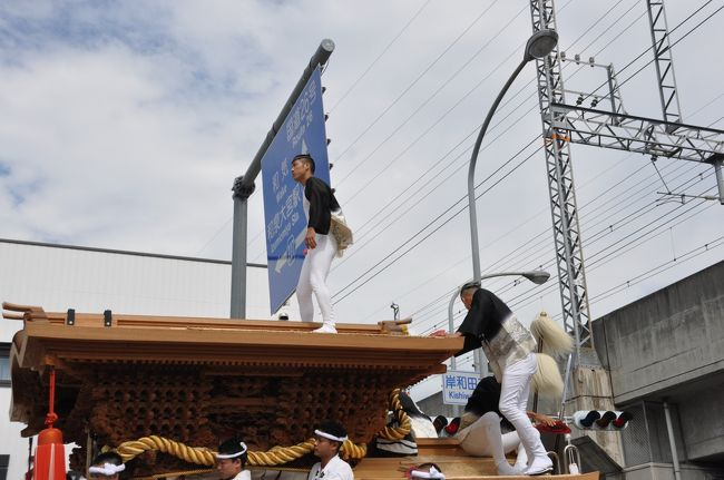 初めて観る岸和田だんじり祭り