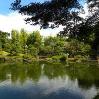 池上本門寺 庭園 松濤園 一般公開 拝見