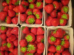 2012夏デンマーク一人旅行7