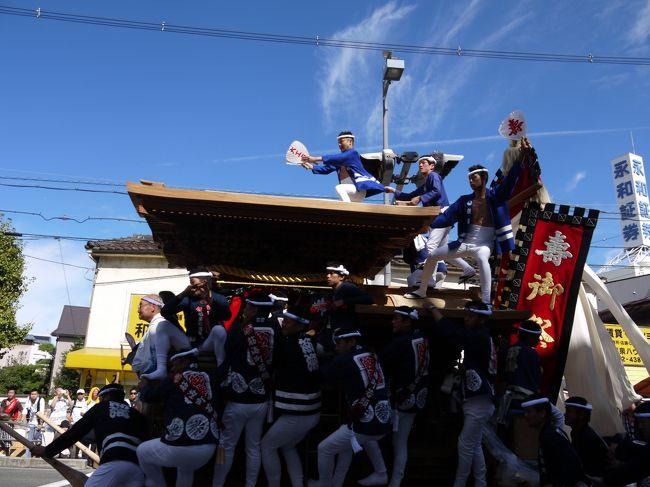 鳳のだんじりや津久野のだんじりには行った事があったのですが、有名な岸和田のだんじり祭りは初めてです。<br /><br />高校時代に、だんじりの時期が来ると、クラスメイトが学校を休んで練習に行くので、うらやましいなと思っていました。<br /><br />私ももうちょっと南に住んでいたら、一員になれたのに。<br />残念です。<br /><br /><br />今回、アメリカから友人が遊びにきていたので、一緒に行って来ました。<br /><br />初めてで、見学場所がよくわからなかったので、ハッピを着たお兄さんに尋ねたら、親切に教えてくれました。